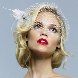 beautiful veils for your big day